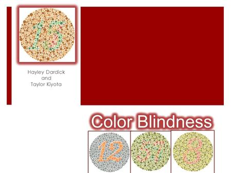 Hayley Dardick and Taylor Kiyota. How is it inherited?  Color blindness is usually inherited and is due to mutations on the X chromosome.  Mutations.
