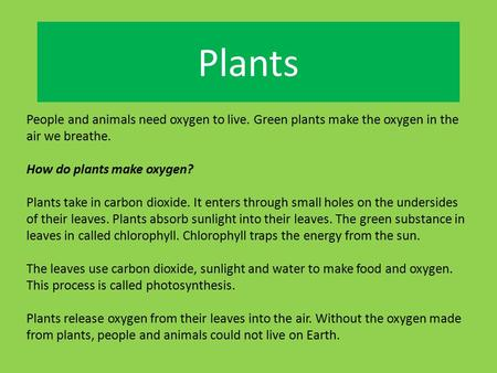 Plants People and animals need oxygen to live. Green plants make the oxygen in the air we breathe. How do plants make oxygen? Plants take in carbon dioxide.