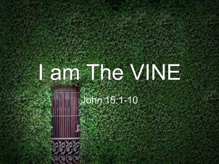 I am The VINE John 15:1-10. I am The VINE God is the Vinedresser : God the Father is ultimately the one who cares for us and watches how we grow.