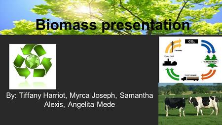 By: Tiffany Harriot, Myrca Joseph, Samantha Alexis, Angelita Mede Biomass presentation.