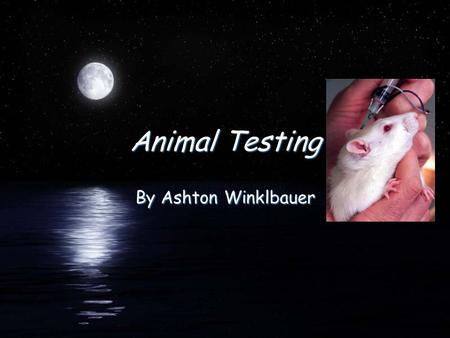 Animal Testing By Ashton Winklbauer. Paragraph 1 FDid you know that many cosmetic companies all over the world test their products on animals? Well over.