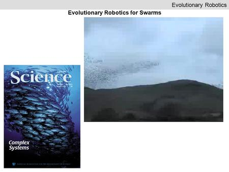 Evolutionary Robotics Evolutionary Robotics for Swarms.