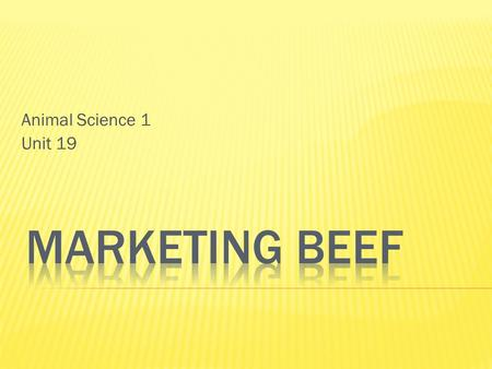 Animal Science 1 Unit 19.  Beef Promotion and Research Act of 1985  Established in 1985  $1/hd check off for every head of beef sold in the United.