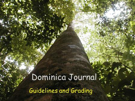Dominica Journal Guidelines and Grading. Journal Format The journal is an important part of the Dominica Study Abroad field experience. A major goal of.