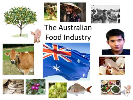 The Australian Food Industry The Aboriginal people of Australia ate a wide arrangement of foods,although much of the food depended on where the tribe.