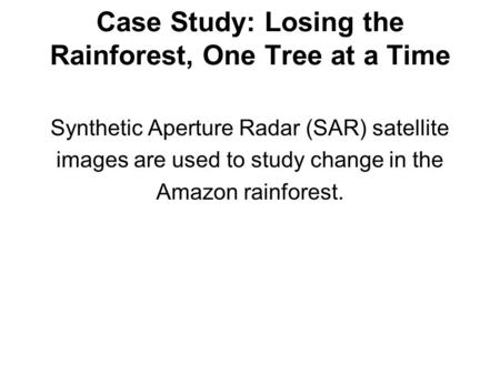 Case Study: Losing the Rainforest, One Tree at a Time Synthetic Aperture Radar (SAR) satellite images are used to study change in the Amazon rainforest.