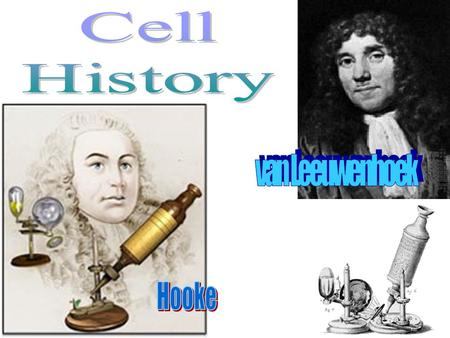 All life is made of cells Discovered after microscope invented 1665: Robert Hooke first observed cork (dead plant bark) –Cork reminded him of tiny rooms.