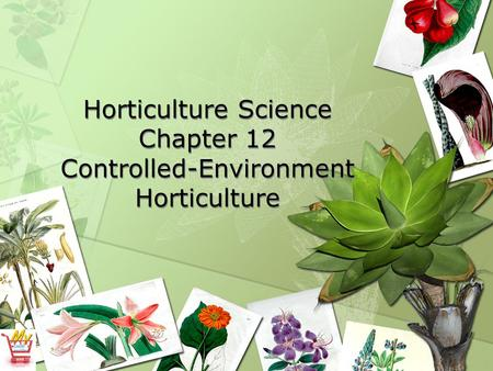 Horticulture Science Chapter 12 Controlled-Environment Horticulture.