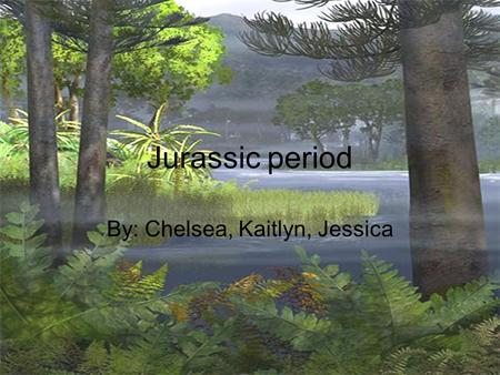 Jurassic period By: Chelsea, Kaitlyn, Jessica. Prehistoric animals The allosaurus was a theropod which means a beast-footed dino who were one of the largest.