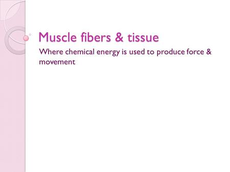 Muscle fibers & tissue Where chemical energy is used to produce force & movement.