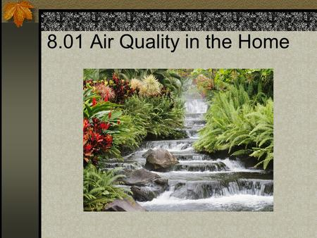 8.01 Air Quality in the Home. Air Purifiers Reduces indoor pollution such as dust, mold, bacteria, and any other pollutants.