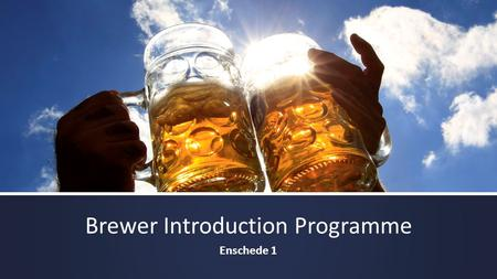 Brewer Introduction Programme Enschede 1. Goals: 10% Dutch 90% International 200 STUDENTS.