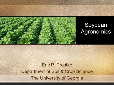 Soybean Agronomics Eric P. Prostko Department of Soil & Crop Science The University of Georgia.