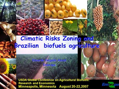16.391,9017.069,1019.114,40 Climatic Risks Zoning and Brazilian biofuels agriculture USDA Global Conference on Agricultural Biofuels: Research and Economics.