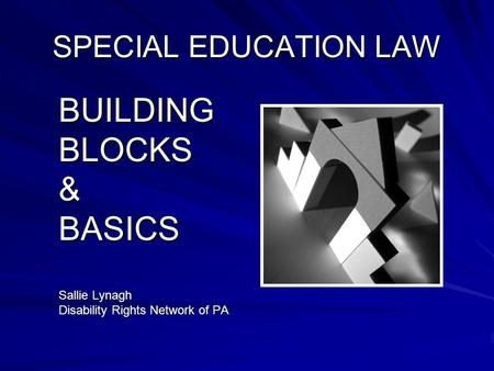 SPECIAL EDUCATION LAW BUILDINGBLOCKS&BASICS Sallie Lynagh Disability Rights Network of PA.