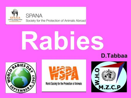 Rabies D.Tabbaa. What is rabies? Rabies is a disease caused by a virus that attacks an animal's brain and spinal cord.