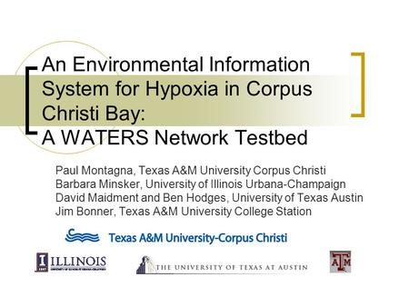 An Environmental Information System for Hypoxia in Corpus Christi Bay: A WATERS Network Testbed Paul Montagna, Texas A&M University Corpus Christi Barbara.