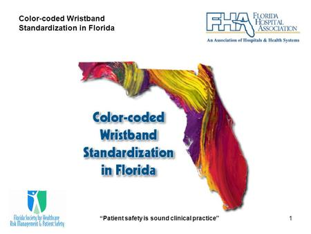 """Patient safety is sound clinical practice""1 Color-coded Wristband Standardization in Florida."