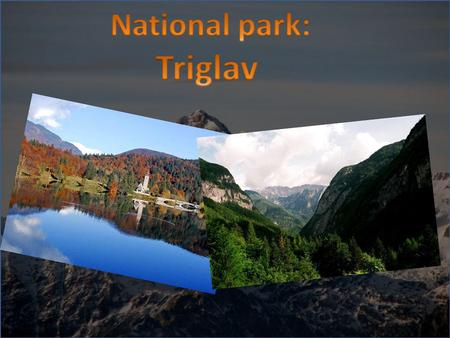 The Triglav National Park (TNP) is the biggest Slovenian national park. The park was named after Triglav, the highest mountain in the heart of the park,