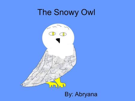 The Snowy Owl By: Abryana. Description Coloring: Size: Physical Characteristics: Source # 4 Male: Pure white Female: Brown spots, white Large owl! 53.