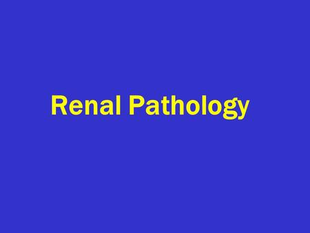 Renal Pathology. Introduction: 150gm: each kidney 1700 liters of blood filtered  180 L of G. filtrate  1.5 L of urine / day. Kidney is a retro-peritoneal.