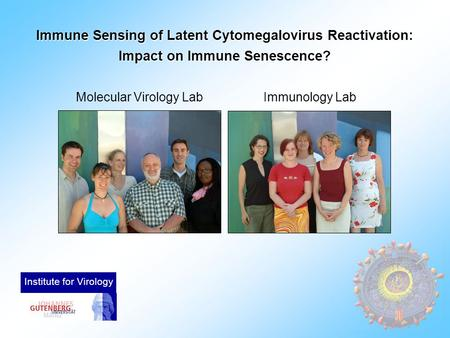 Immune Sensing of Latent Cytomegalovirus Reactivation: Impact on Immune Senescence? Molecular Virology LabImmunology Lab Institute for Virology.