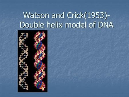 Watson and Crick(1953)- Double helix model of DNA