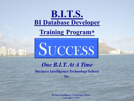 B.I.T.S. BI Database Developer Training Program ® How Do You Achieve One B.I.T. At A Time Business Intelligence <strong>Technology</strong> School Inc. Business Intelligence.