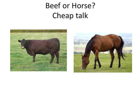 Beef or Horse? Cheap talk. Beef or horse? In a restaurant, some customers prefer beef, some prefer horse. Type s likes beef, type t likes horse Waitress.