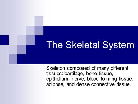 The Skeletal System Skeleton composed of many different tissues: cartilage, bone tissue, epithelium, nerve, blood forming tissue, adipose, and dense connective.