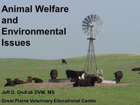 Animal Welfare and Environmental Issues