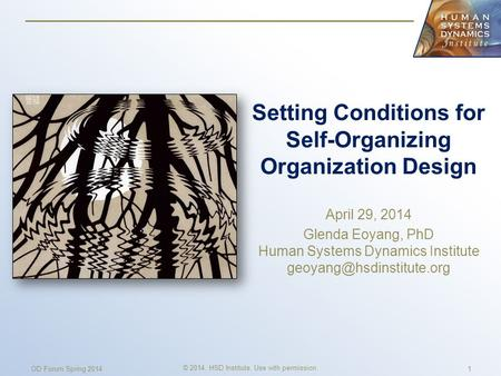 Setting Conditions for Self-Organizing Organization Design April 29, 2014 Glenda Eoyang, PhD Human Systems Dynamics Institute