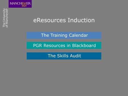 EResources Induction The Training Calendar PGR Resources in Blackboard The Skills Audit.