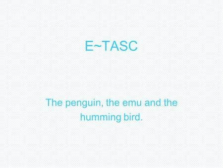 E~TASC The penguin, the emu and the humming bird..