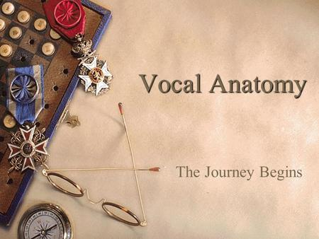 Vocal Anatomy The Journey Begins Singing involves the control and manipulation of numerous muscles. These muscles are accustomed to doing their own thing.
