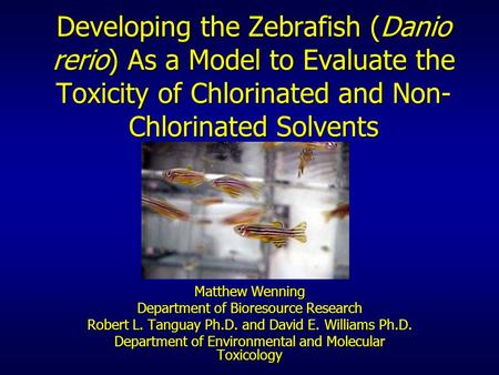 Developing the Zebrafish (Danio rerio) As a Model to Evaluate the Toxicity of Chlorinated and Non-Chlorinated Solvents Matthew Wenning Department of Bioresource.