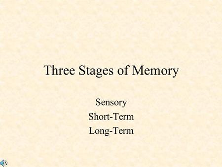 Sensory Short-Term Long-Term