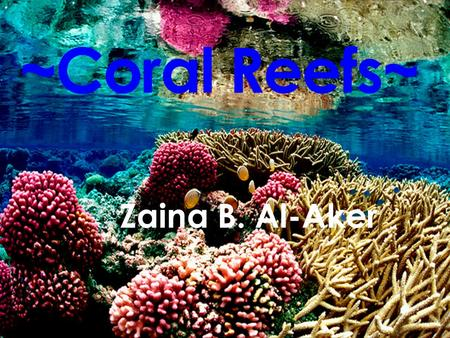 ~Coral Reefs~ Zaina B. Al-Aker. Where Coral Reefs Are Located.