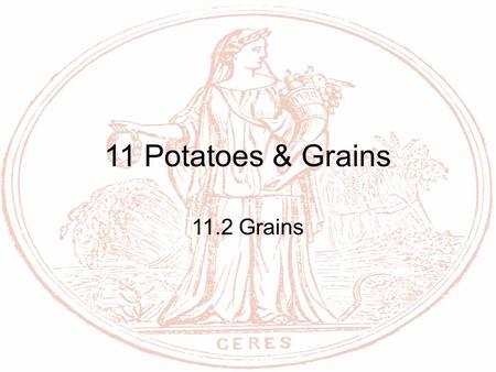 11 Potatoes & Grains 11.2 Grains. Objectives Outline methods to select, receive, and store grains Describe physical properties of grains Distinguish between.