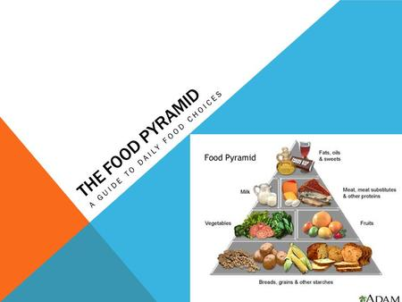 THE FOOD PYRAMID A GUIDE TO DAILY FOOD CHOICES. KEY TERMS  Nutrients  Whole grain  Refined grains.