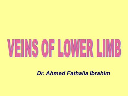 Dr. Ahmed Fathalla Ibrahim. VEINS OF LOWER LIMB SUPERFICIAL VEINSSUPERFICIAL VEINS DEEP VEINSDEEP VEINS PERFORATING VEINSPERFORATING VEINS.