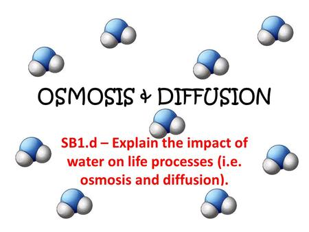 OSMOSIS & DIFFUSION SB1.d – Explain the impact of water on life processes (i.e. osmosis and diffusion).