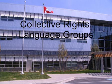 Collective Rights: Language Groups. Terminology Francophone: a person whose first language is French Anglophone: a person whose first language is English.