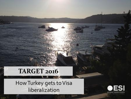 TARGET 2016 How Turkey gets to Visa liberalization.