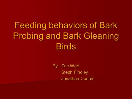 Feeding behaviors of Bark Probing and Bark Gleaning Birds By: Zac Wert Steph Findley Steph Findley Jonathan Confer Jonathan Confer.