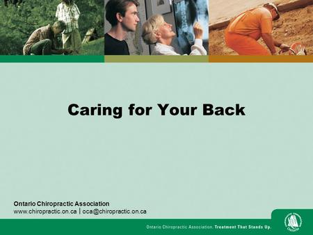 Caring for Your Back Ontario Chiropractic Association  