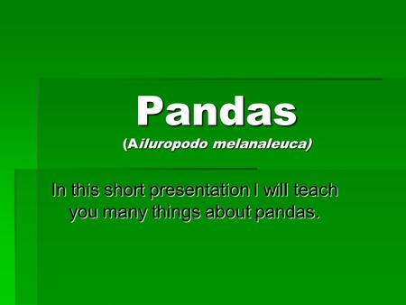 Pandas (Ailuropodo melanaleuca) In this short presentation I will teach you many things about pandas.