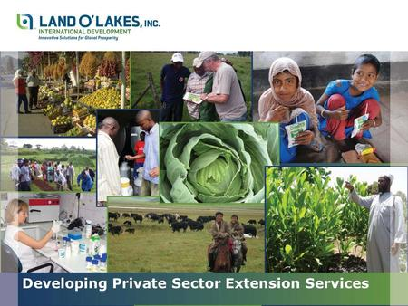 Developing Private Sector Extension Services. Outline Developing Private Sector Extension Services Thomas J. Herlehy, Ph.D. Land O'Lakes, Inc. – Winfield.
