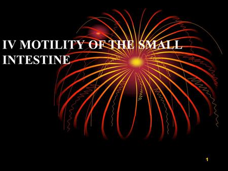 IV MOTILITY OF THE SMALL INTESTINE