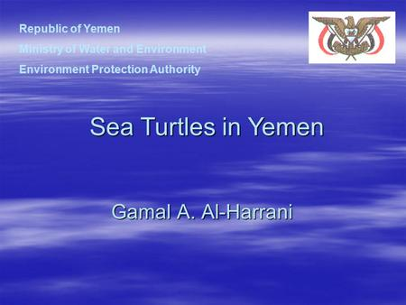 Gamal A. Al-Harrani Sea Turtles in Yemen Republic of Yemen Ministry of Water and Environment Environment Protection Authority.